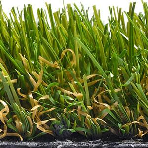 stratford-grass