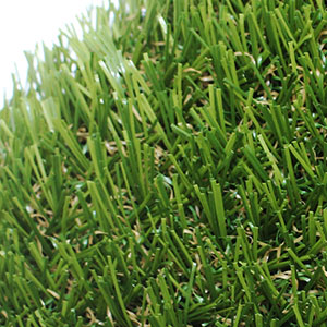 Harvington Grass