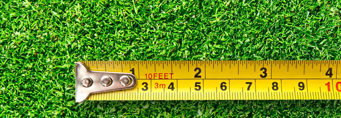 measuring-grass